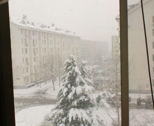 窗外的大雪